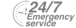 24/7 Emergency Service Pest Control in Balham, SW12. Call Now! 020 8166 9746